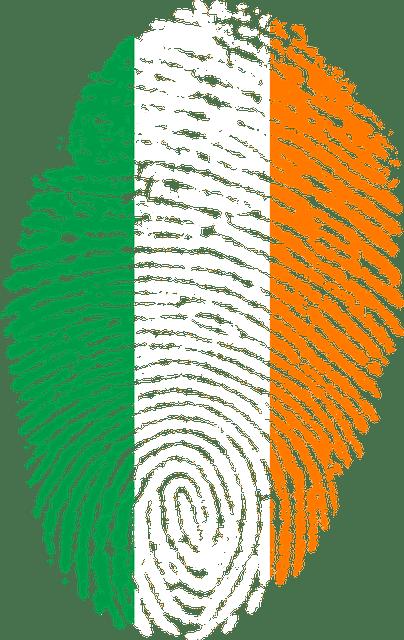 Agencias de traducción irlandesas