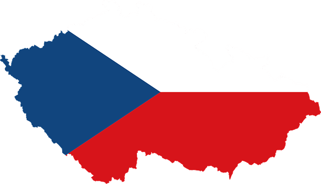 Servicio de traducción checo-español