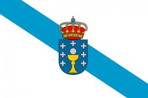 Traductor gallego-español online