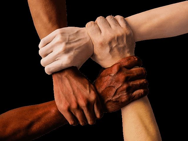 Significado de altruismo
