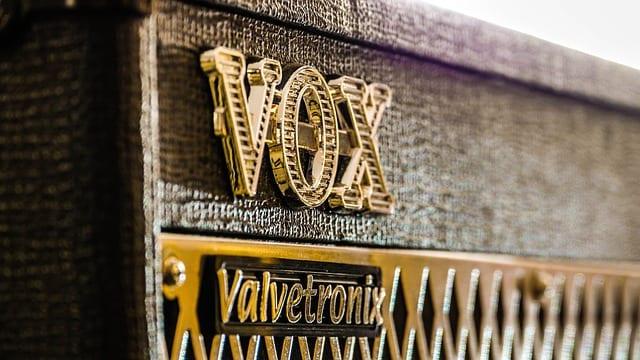 qué quiere decir vox